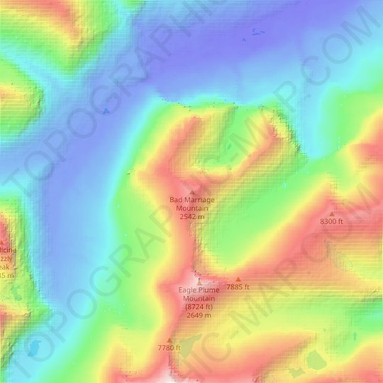 Bad Marriage Mountain topographic map, relief map, elevations map